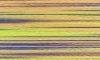 Nici PREMIUM MULTICOLOR do haftu komputerowego zmieniające kolor 1000m - 9981
