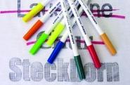 BERNINA PaintWork - Zamienia Multi-Hafciarkę w drukarkę do tkanin. Maluj pisakami na ubraniach